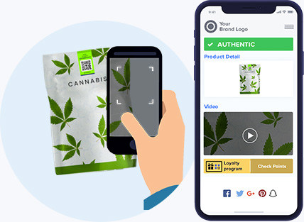 Cannabis product tag scan using a smartphone to check product authenticity